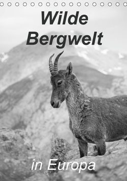 Wilde Bergwelt in Europa (Tischkalender 2019 DIN A5 hoch) von Görig,  Christine