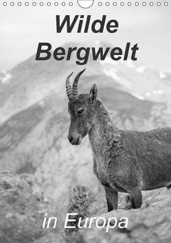 Wilde Bergwelt in Europa (Wandkalender 2018 DIN A4 hoch) von Görig,  Christine
