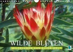 Wilde Blüten: Wildblumen aus aller Welt (Wandkalender 2018 DIN A4 quer) von CALVENDO,  k.A.