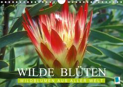 Wilde Blüten: Wildblumen aus aller Welt (Wandkalender 2020 DIN A4 quer) von CALVENDO