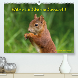 Wilde Eichhörnchenwelt! (Premium, hochwertiger DIN A2 Wandkalender 2021, Kunstdruck in Hochglanz) von Alber und Carsten Cording,  Birte