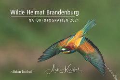 Brandenburger Natur – Kalender 2021 von Johne,  Marc, Kneifel,  Anke