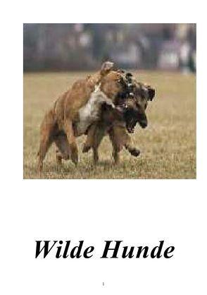 Wilde Hunde von Dolz,  Gabriele