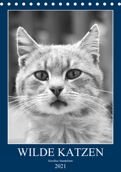 Wilde Katzen – Korsikas Samtpfoten (Tischkalender 2021 DIN A5 hoch) von Schimmack,  Claudia