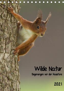 Wilde Natur – Begegnungen vor der Haustüre (Tischkalender 2021 DIN A5 hoch) von Segelcke Uwe Hilsmann,  Daniel