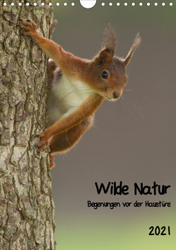 Wilde Natur – Begegnungen vor der Haustüre (Wandkalender 2021 DIN A4 hoch) von Segelcke Uwe Hilsmann,  Daniel