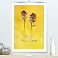 Wilde Orchideen Europas (Premium, hochwertiger DIN A2 Wandkalender 2021, Kunstdruck in Hochglanz) von Kraschl,  Marion