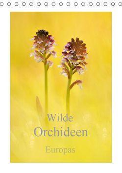 Wilde Orchideen Europas (Tischkalender 2019 DIN A5 hoch)