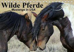 Wilde Pferde • Mustangs in USA (Tischkalender 2019 DIN A5 quer) von Stanzer,  Elisabeth