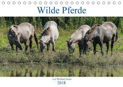Wilde Pferde von Michael Jaster (Tischkalender 2018 DIN A5 quer) von N.,  N.