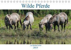 Wilde Pferde von Michael Jaster (Tischkalender 2019 DIN A5 quer) von N.,  N.