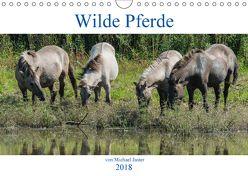 Wilde Pferde von Michael Jaster (Wandkalender 2018 DIN A4 quer) von N.,  N.