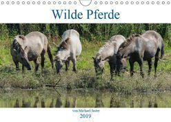 Wilde Pferde von Michael Jaster (Wandkalender 2019 DIN A4 quer) von N.,  N.