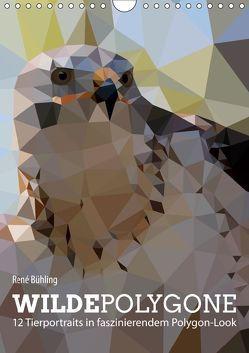 Wilde Polygone (Wandkalender 2019 DIN A4 hoch) von Bühling,  René