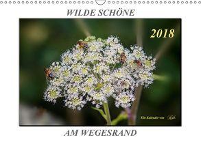 Wilde Schöne am Wegesrand – Blumen und Pflanzen (Wandkalender 2018 DIN A3 quer) von Roder,  Peter