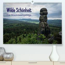 Wilde Schönheit – Das Elbsandsteingebirge (Premium, hochwertiger DIN A2 Wandkalender 2020, Kunstdruck in Hochglanz) von Krebs,  Thomas