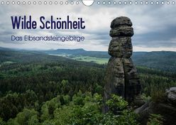 Wilde Schönheit – Das Elbsandsteingebirge (Wandkalender 2019 DIN A4 quer) von Krebs,  Thomas