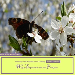 Wilde Superfoods für das Frühjahr von Schaad,  Xenia, Seiters,  Niclas