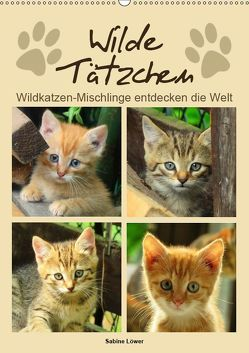 Wilde Tätzchen (Wandkalender 2019 DIN A2 hoch) von Löwer,  Sabine