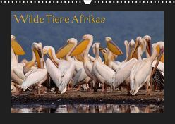 Wilde Tiere Afrikas (Wandkalender 2019 DIN A3 quer) von Depner,  Uta