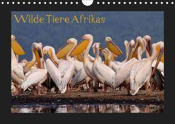Wilde Tiere Afrikas (Wandkalender 2019 DIN A4 quer) von Depner,  Uta