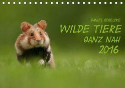 Wilde Tiere – Ganz nah (Tischkalender 2019 DIN A5 quer) von Segelcke,  Daniel