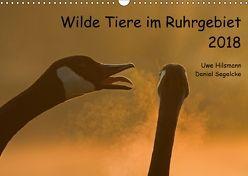 Wilde Tiere im Ruhrgebiet (Wandkalender 2018 DIN A3 quer) von Hilsmann,  Uwe, Segelcke,  Daniel
