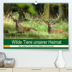 Wilde Tiere unserer Heimat (Premium, hochwertiger DIN A2 Wandkalender 2020, Kunstdruck in Hochglanz) von Brack,  Roland