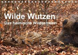 Wilde Wutzen. Das heimische Wildschwein (Tischkalender 2018 DIN A5 quer) von von Düren,  Alexander