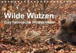 Wilde Wutzen. Das heimische Wildschwein (Tischkalender 2019 DIN A5 quer) von von Düren,  Alexander