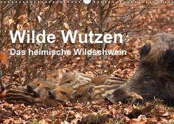 Wilde Wutzen. Das heimische Wildschwein (Wandkalender 2018 DIN A3 quer) von von Düren,  Alexander
