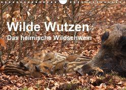 Wilde Wutzen. Das heimische Wildschwein (Wandkalender 2018 DIN A4 quer) von von Düren,  Alexander