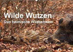 Wilde Wutzen. Das heimische Wildschwein (Wandkalender 2019 DIN A2 quer) von von Düren,  Alexander