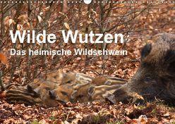 Wilde Wutzen. Das heimische Wildschwein (Wandkalender 2019 DIN A3 quer) von von Düren,  Alexander