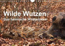 Wilde Wutzen. Das heimische Wildschwein (Wandkalender 2019 DIN A4 quer) von von Düren,  Alexander