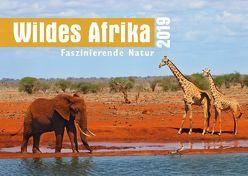 Wildes Afrika 2019 von Krikava,  Angelika
