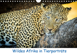Wildes Afrika in Tierporträts (Wandkalender 2019 DIN A4 quer) von Weitzer,  Frank