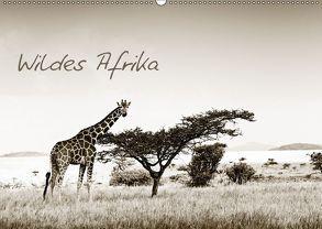 Wildes Afrika (Wandkalender 2018 DIN A2 quer) von Tiedge - Wanyamacollection,  Klaus