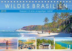 Wildes Brasilien: Reiseziel mit einer einzigartigen Vielfalt (Tischkalender 2019 DIN A5 quer) von CALVENDO