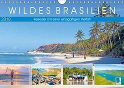 Wildes Brasilien: Reiseziel mit einer einzigartigen Vielfalt (Wandkalender 2019 DIN A4 quer) von CALVENDO