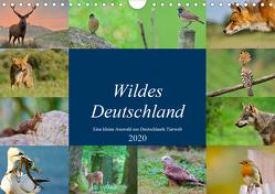 """Wildes Deutschland (Wandkalender 2020 DIN A4 quer) von Freund,  Andreas""""aFriend"""""""
