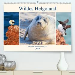 Wildes Helgoland – Basstölpel, Kegelrobbe und Co. 2020 (Premium, hochwertiger DIN A2 Wandkalender 2020, Kunstdruck in Hochglanz) von Beyer (Moqui),  Daniela