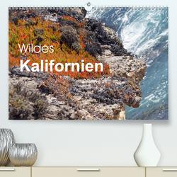 Wildes Kalifornien (Premium, hochwertiger DIN A2 Wandkalender 2020, Kunstdruck in Hochglanz) von Blass,  Bettina