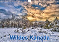 Wildes Kanada (Wandkalender 2018 DIN A4 quer) von Atlantismedia,  k.A.
