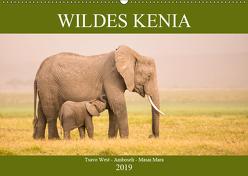 Wildes Kenia (Wandkalender 2019 DIN A2 quer) von Schikore,  Martina