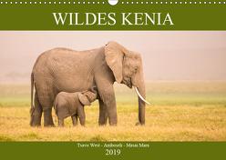 Wildes Kenia (Wandkalender 2019 DIN A3 quer) von Schikore,  Martina