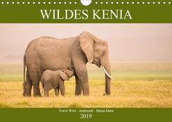Wildes Kenia (Wandkalender 2019 DIN A4 quer) von Schikore,  Martina