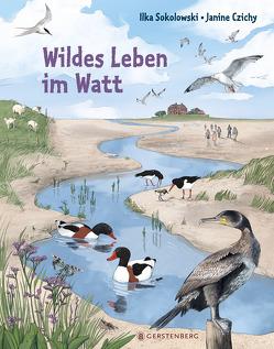 Wildes Leben im Watt von Czichy,  Janine, Sokolowski,  Ilka