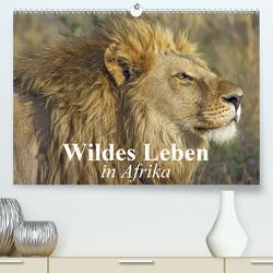 Wildes Leben in Afrika (Premium, hochwertiger DIN A2 Wandkalender 2020, Kunstdruck in Hochglanz) von Stanzer,  Elisabeth