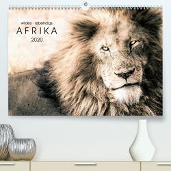 wildes – lebendiges AFRIKA (Premium, hochwertiger DIN A2 Wandkalender 2020, Kunstdruck in Hochglanz) von SEIFINGER,  TOBY